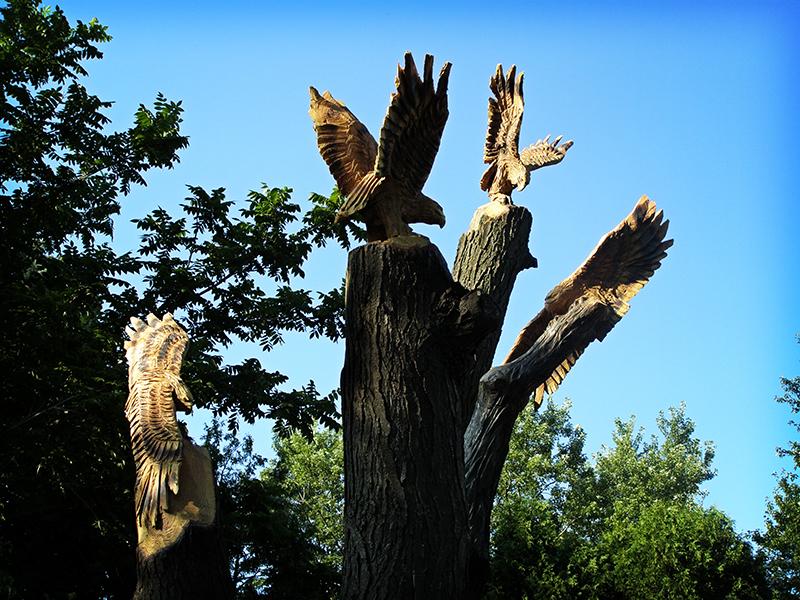 Cast Of Hawks