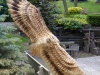 Old Mill - Red Tailed Hawk